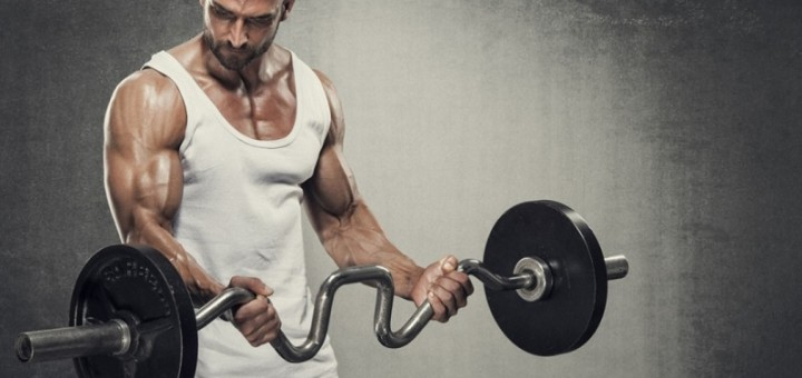 Gain more muscle