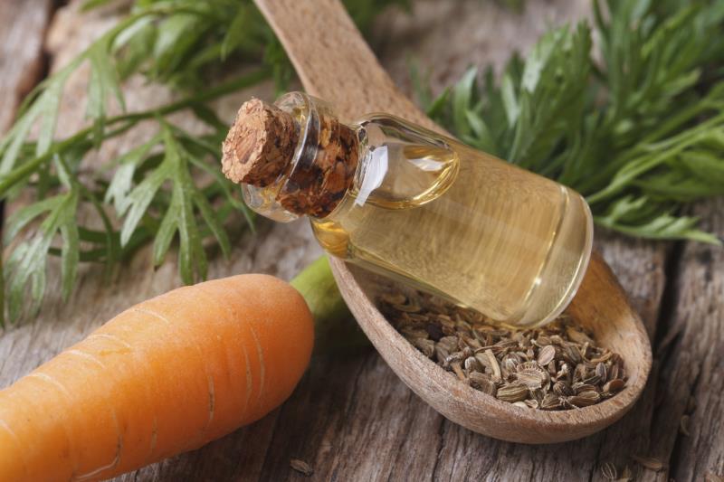 Carrot_Oil
